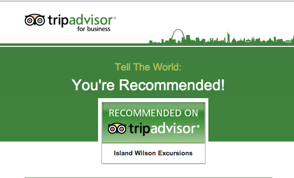 Recommended on Tripadvisor: Island Wilson Excursions