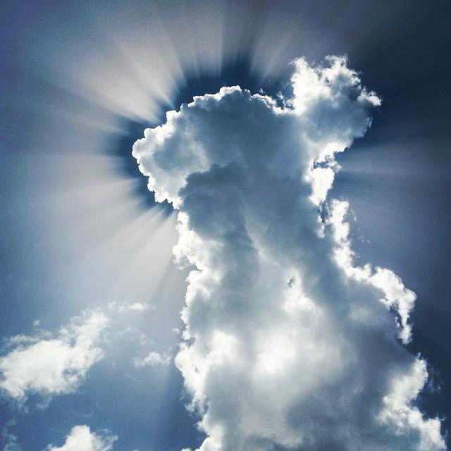Cloud 8.
