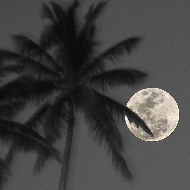 Merry Christmas from the Virgin Islands. Full Cold Moon.
