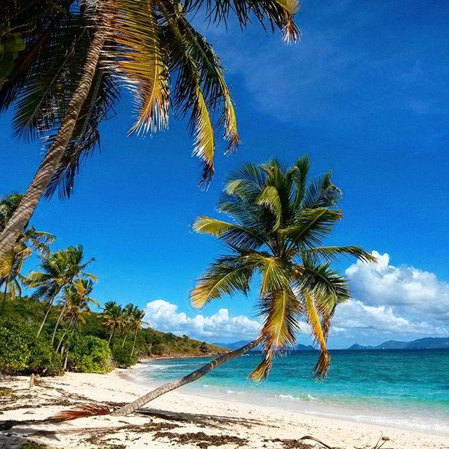 Coconut Bay.